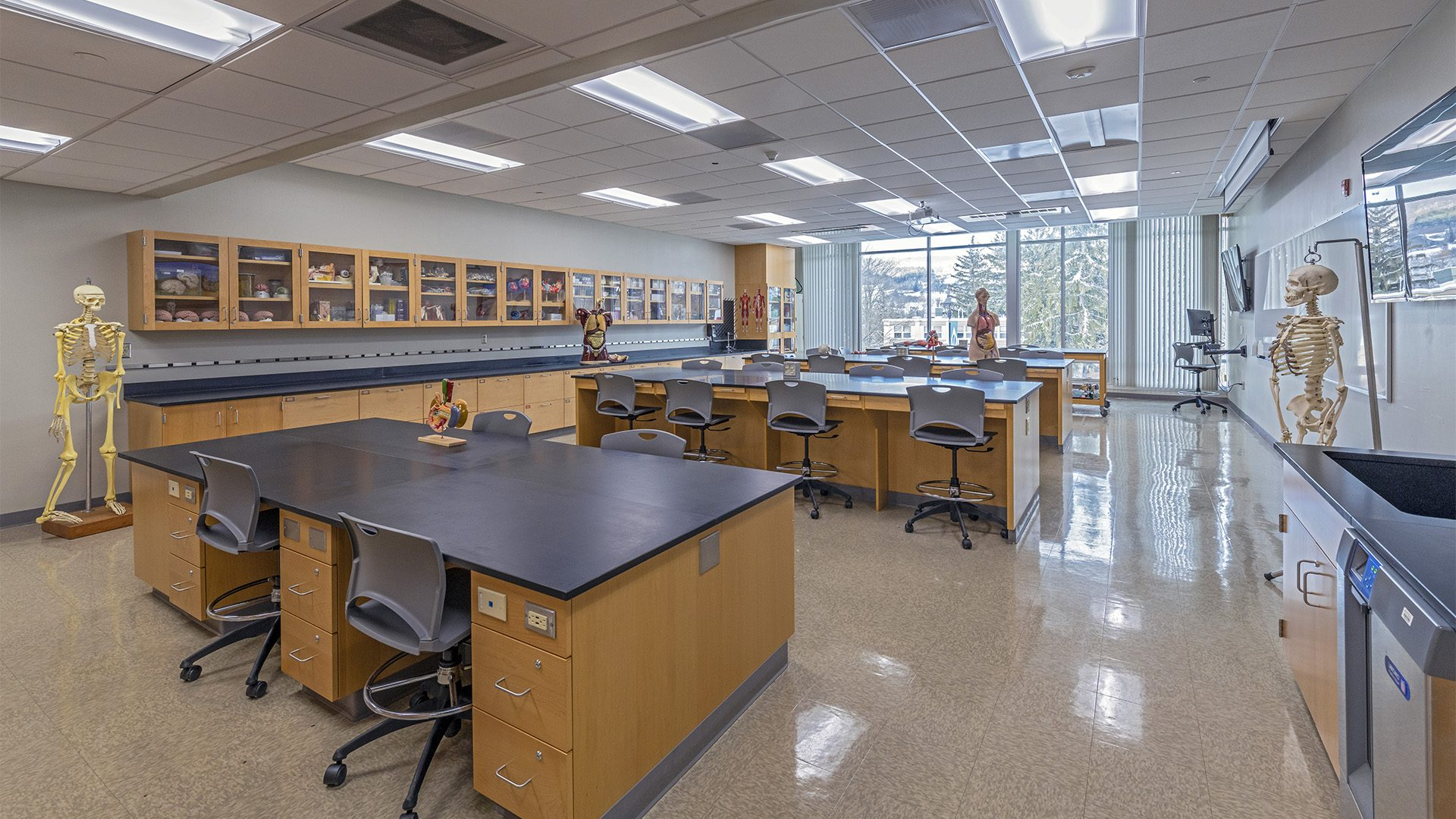 Wheeler lab
